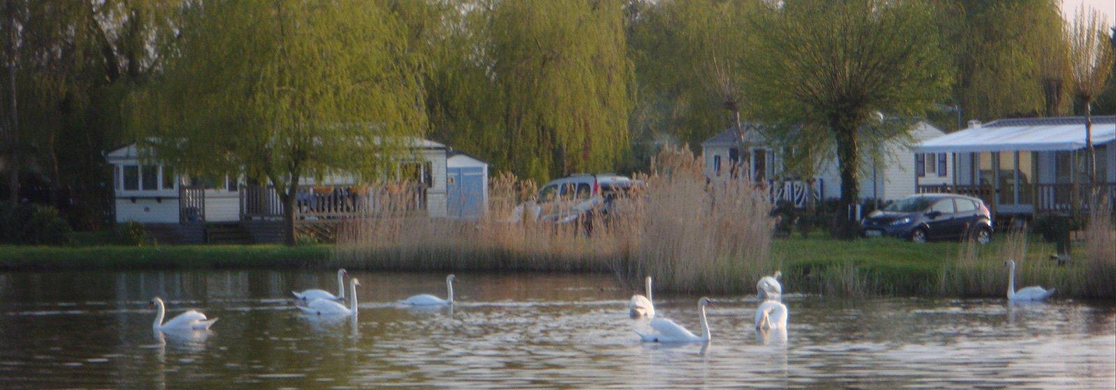Camping Deauville au bord d'un étang